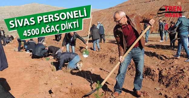 TCDD Sivas Personelleri 4500 Fidanı Toprakla Buluşturdu