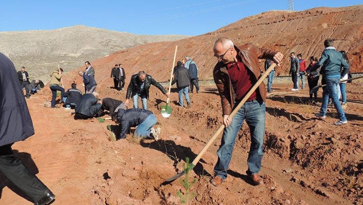 tcdd 4 bölge müdürlüğü personelleri 4500 ağaç dikti demiryolu haberleri