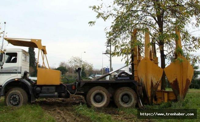 Metro Projesi Hattındaki Ağaçlar Taşınıyor