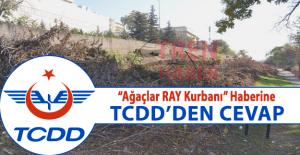 Ağaçlar BaşkentRay Kurbanı haberine TCDD'den Cevap