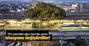700 yaşındaki ağacı kesmek yerine istasyonu değiştirdiler
