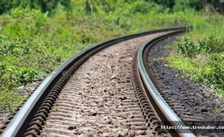 TCDD'den Demiryollarında İlaçlama Uyarısı