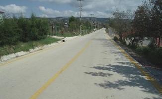 İzmit Gedikli ve Zeytinburnu köylerine beton yol