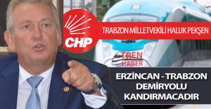"""CHP Trabzon Milletvekili Haluk Pekşen: """"Erzincan - Trabzon demiryolu kandırmacıdır"""""""