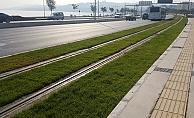 İzmir'e yeşil tramvay yolları