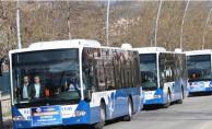 Cip Mesire Alanı'na Belediye Otobüs Seferleri