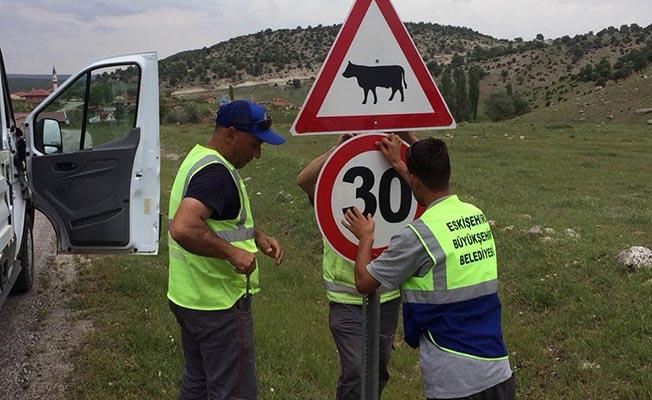 Eskişehir'de kent merkezi ve ilçelerde asfalt yolların yol çizgi boyama ile trafik işaret levhalarının montaj ve yenileme çalışmaları Büyükşehir Belediyesi ekipleri tarafından devam ediyor.